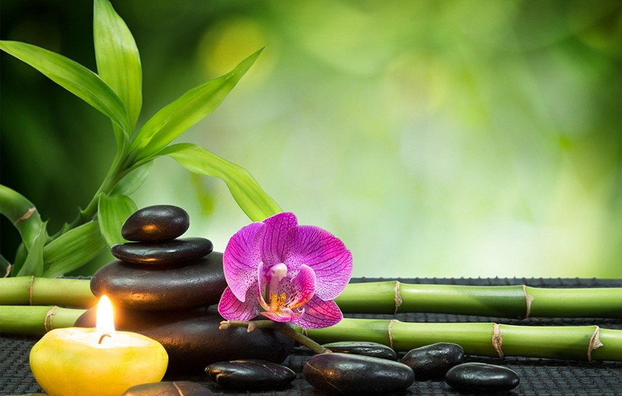 Las-10-terapias-alternativas-más-populares-que-debes-conocer