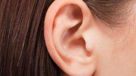 Cómo funcionan los oídos | Diferencias entre el oído derecho y el izquierdo