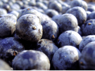 Acai Berry, contra el colesterol