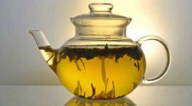 Alga Fucus – Usos, Propiedades y Beneficios