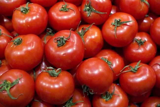 Tomates-Propiedades-y-Beneficios