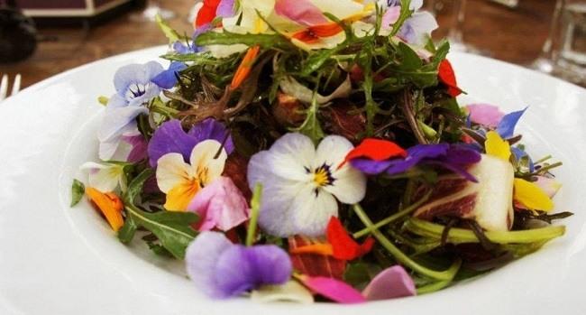 flores-comestibles-beneficios-donde-comprarlas-y-precio-flores-comestibles