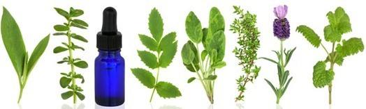 remedios homeopatia-1