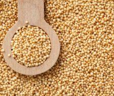 Propiedades y Beneficios del Amaranto