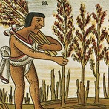 el trabajo mas antiguo del mundo prostibulo costa rica