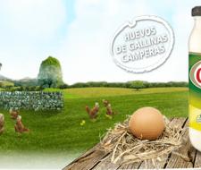 Calvé, la mayonesa casera con huevos de gallinas camperas