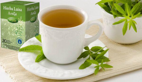 hierba-luisa-o-verbena-propiedades-y-beneficios-efectos-secundarios-contra-indicaciones