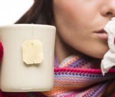 Hierbas medicinales para el resfriado y la tos
