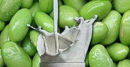 Qué es la Lecitina de soja: Para que sirve, beneficios y contraindicaciones
