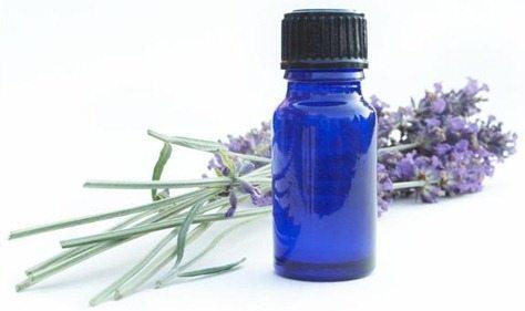 lavender-oil-2_thumb10