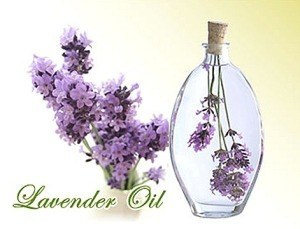 page_Lavender_thumb16.jpg