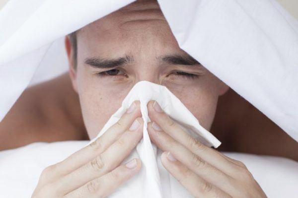 malvavisco-propiedades-y-beneficiosresfriados