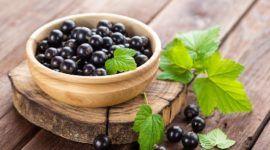 Grosellero negro | Propiedades y beneficios