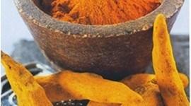 Curry |beneficioso tratamiento tendinitis