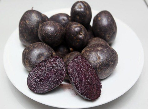 purple-potatoes_1733088i