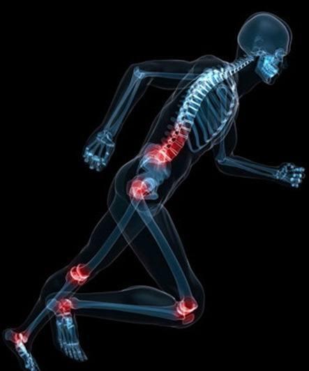 strong_bones0913_post_1315910184