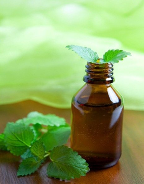 Minzöl/ mint oil