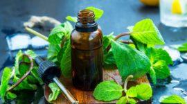 Aceite de menta: beneficios y usos