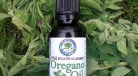 Cómo hacer aceite de orégano en casa: propiedades y beneficios