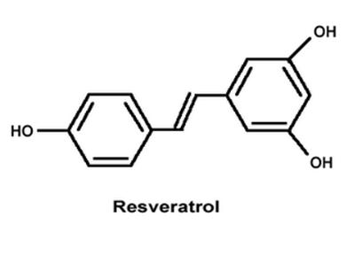 Reveratrol