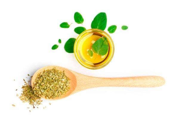 propiedades-aceite-de-oregano-combatir-infecciones