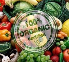 Alimentos naturales| vs alimentos ecólogicos