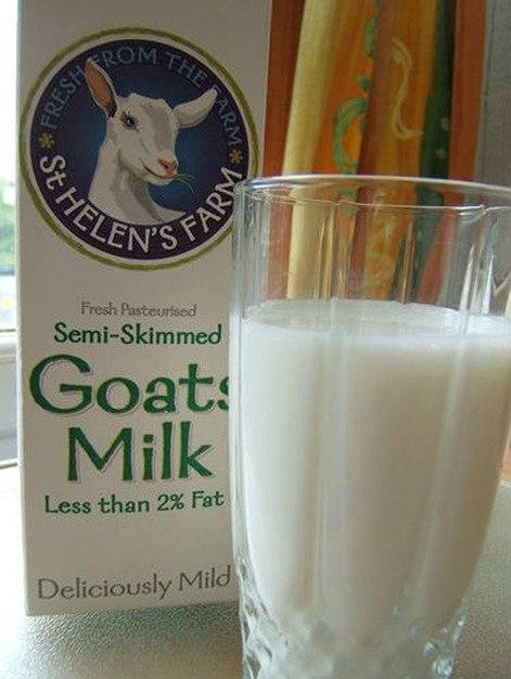 Leche cabra | valor nutricional