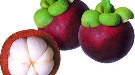 Beneficios del mangostan