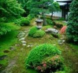 Zen Garden - Pulsa sobre la imagen