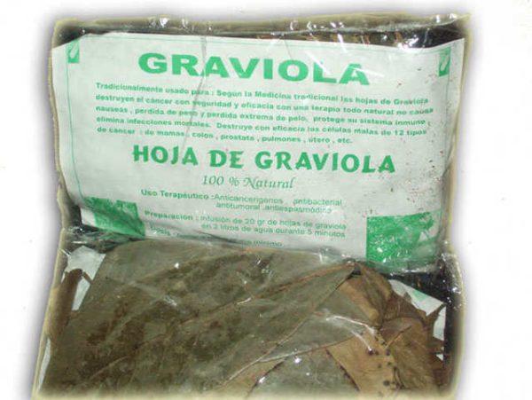graviola-o-guanabana-sus-propiedades-donde-comprar