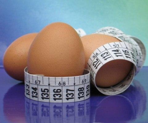 Dieta huevo