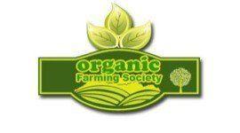 Productos ecológicos: la verdad detrás de estas etiquetas