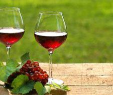 El vino tinto | Beneficios, propiedades y cuándo tomarlo