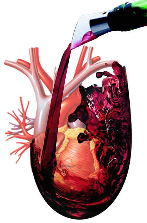 El-vino-tinto-Beneficios-propiedades-cuándo-tomarlo