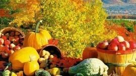Las mejores dietas para la temporada de otoño