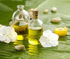 Aceite de calófilo – Usos, propiedades y beneficios