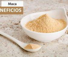 Maca Andina – Qué es, Propiedades, Beneficios y dónde comprarla