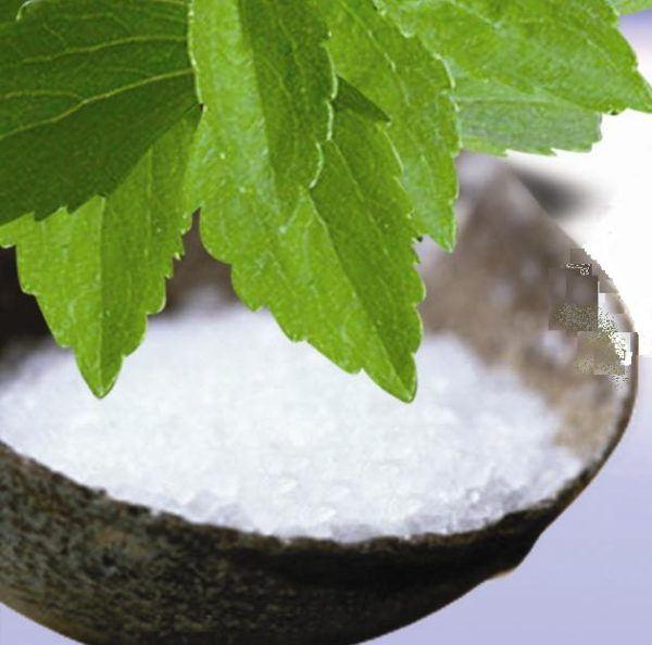 Las propiedades de la Stevia (Estevia)