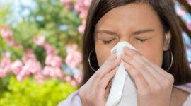 Alergia – Qué es bueno para la alergia