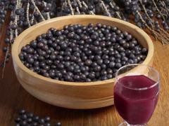 Acai Berry, una fuente de antioxidantes naturales