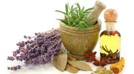 Medicina natural – Plantas antiestrés