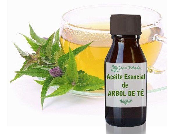 remedios-caseros-para-el-lumbago-aceite-arbol-de-te
