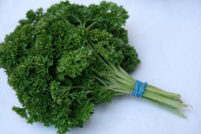7-consejos-inteligentes-para-hacer-que-los-alimentos-duren-mas-tiempo-hacer-un-ramo-de-hierbas