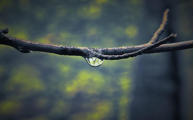 agua-de-solan-de-cabras-propiedades-beneficios-mitos-y-caracteristicas-agua-natural