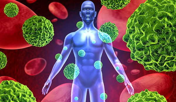 salvia-propiedades-bactericida