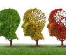 Remedios para el Alzheimer