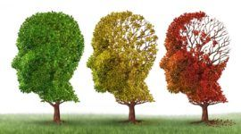 Nuevos enfoques para la creación de ambientes saludables