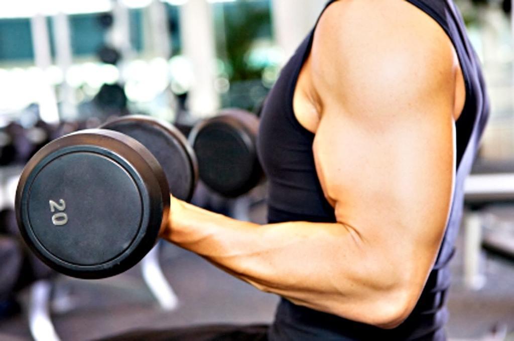 L-Carnitina-Como-tomar-y-para-que-sirve-musculatura
