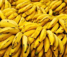 Plátano – Propiedades, Beneficios y Curiosidades