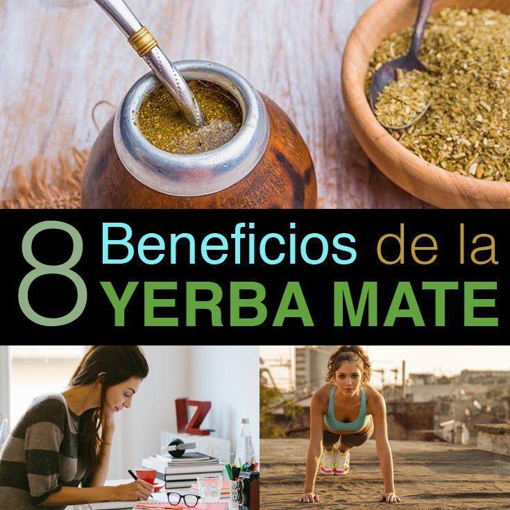 Yerba-Mate-propiedades-y-beneficios
